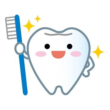 輝く白い歯
