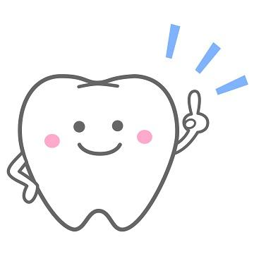 きれいな歯のヒント